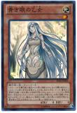 SD25-JP005 Blue-Eyed Maiden