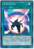 SD29-JP025 Sky's Iris