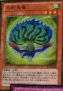 Jump Festa 2013 - Special Card Pack Peacock