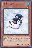 ABYR-JP037 Tiny Penguin