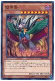 CORE-JP040 Bird of Paradise