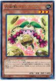 CPD1-JP030 Coinnoma the Divination Princess