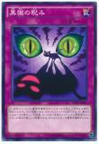 CPD1-JP037 Glare of the Black Cat