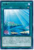 CPD1-JP042 Aquarium Stage