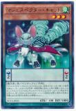 DOCS-JP025 Majespecter Cat