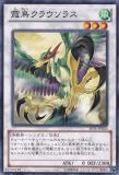 JOTL-JP043 Mist Bird Clausolas