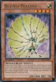 LVAL-EN027 Bujingi Peacock