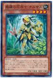 LVAL-JP018 Shinra Flowering Plant, Narces