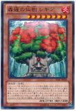 LVAL-JP020 Shinra Hermit Tree, Regia