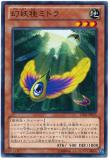 LVAL-JP035 Confusing Seed Mitora