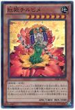 LVAL-JP039 Crimson Princess Chirubime