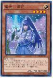 NECH-JP041 Denkou - Sekka