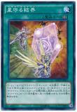 NECH-JP063 Hekisa Tella-Knight