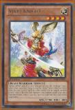 SHSP-EN099 Vivid Knight