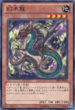 SHSP-JP010 Mythical Wood Dragon