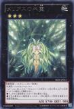 SHSP-JP055 Tree Spirit of Melias